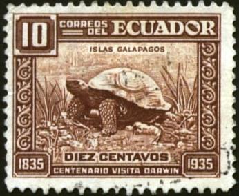 Ecuador-1
