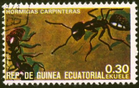 Equatorial Guinea-3