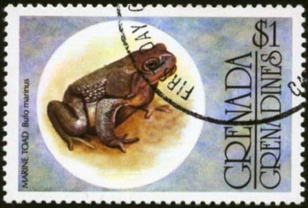 Genada Grenadines-1