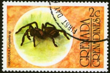 Grenada Grenadines-2