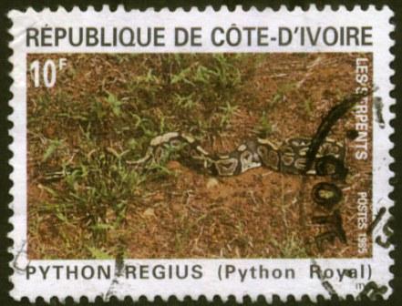 Ivory Coast-4