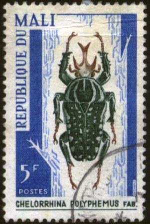 Mali-1