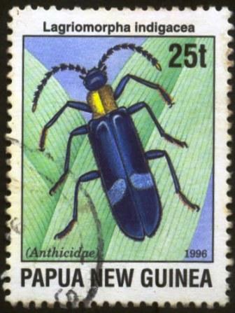 Papua New Guinea-1