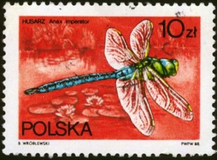 Poland-6