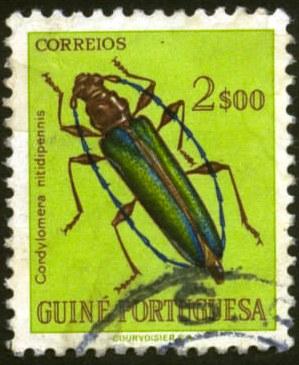 Portugese Guinea-1