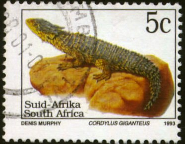 South Africa-1