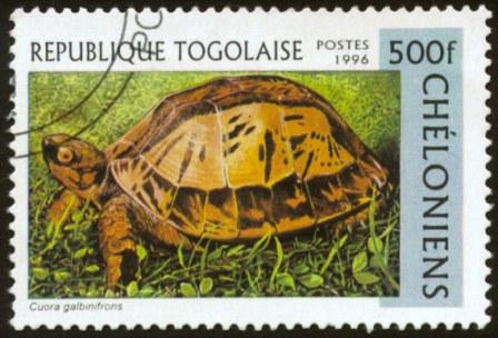 Togo-2