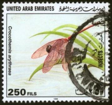 UAE-1