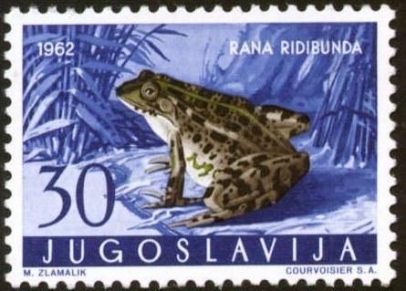Yugoslavia-2