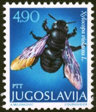 Yugoslavia-5
